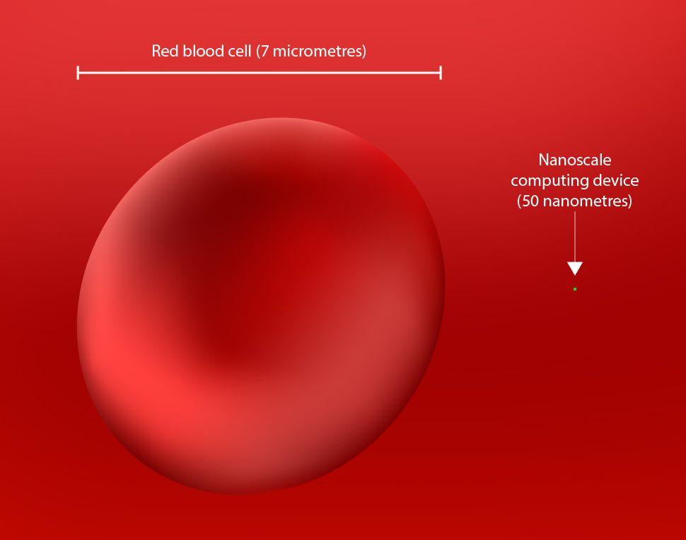 red blood cell nanotechnology nanotech future timeline