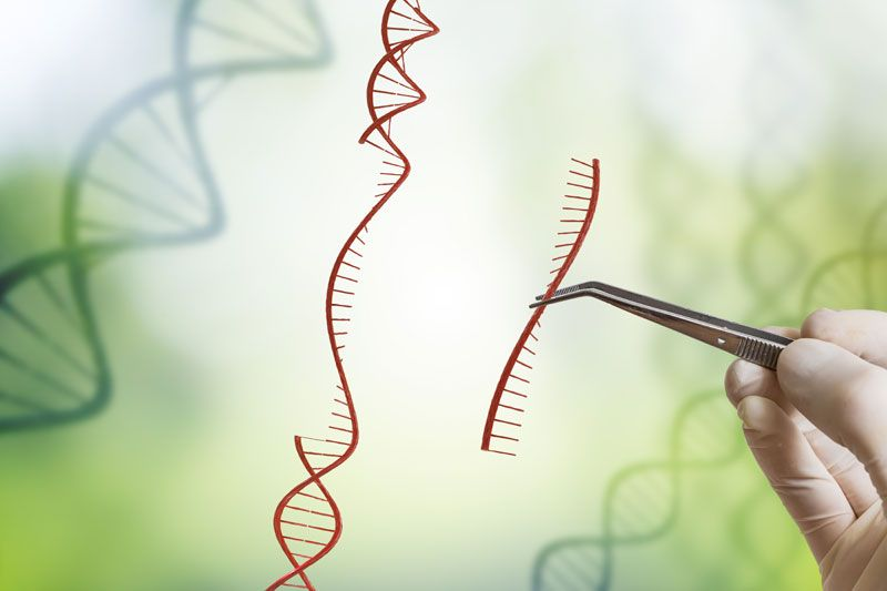 crispr future technology