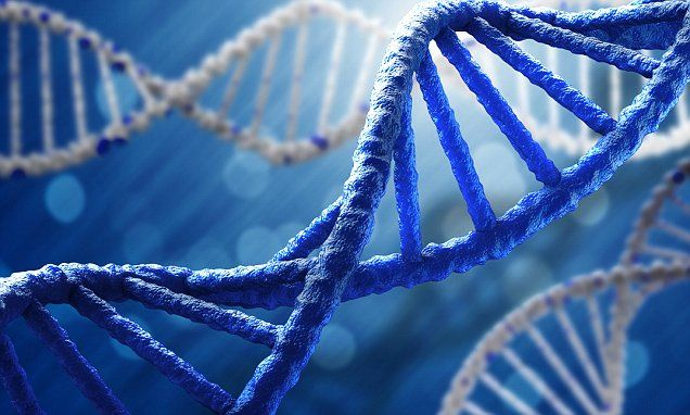 Future schools could test a students dna to predict their success malvernweather Choice Image