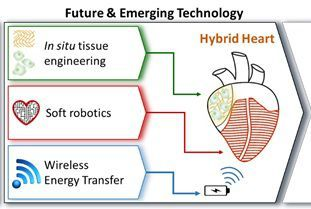 HybridHeart's work based on in situ tissue engineering, soft robotics and wireless energy transfer