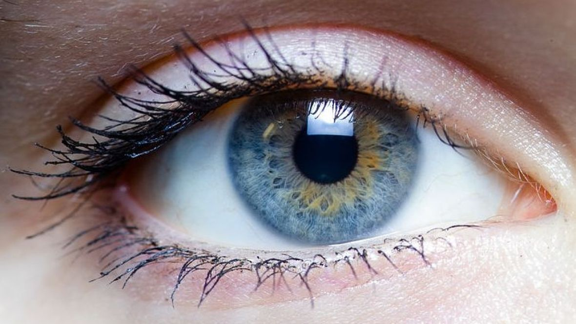 Implantable Bionic Lens could ...