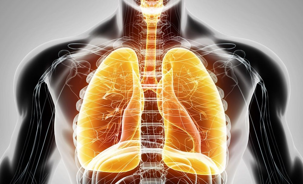 Researchers Report Breakthrough In Human Lung Regeneration