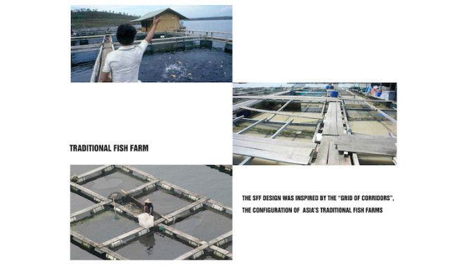 Solar-Powered Floating Farms 5