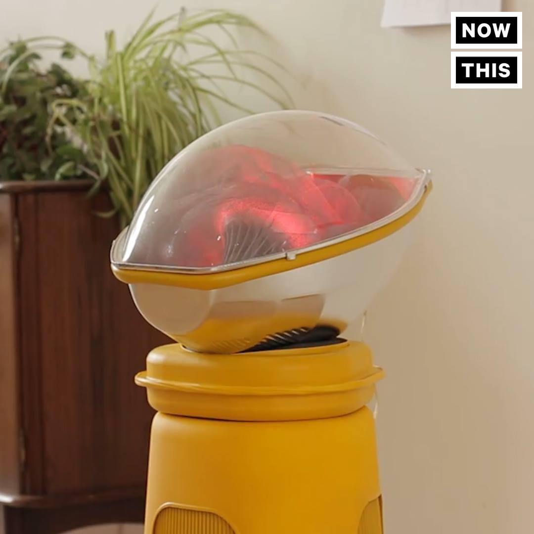 Artificial Womb Living Room