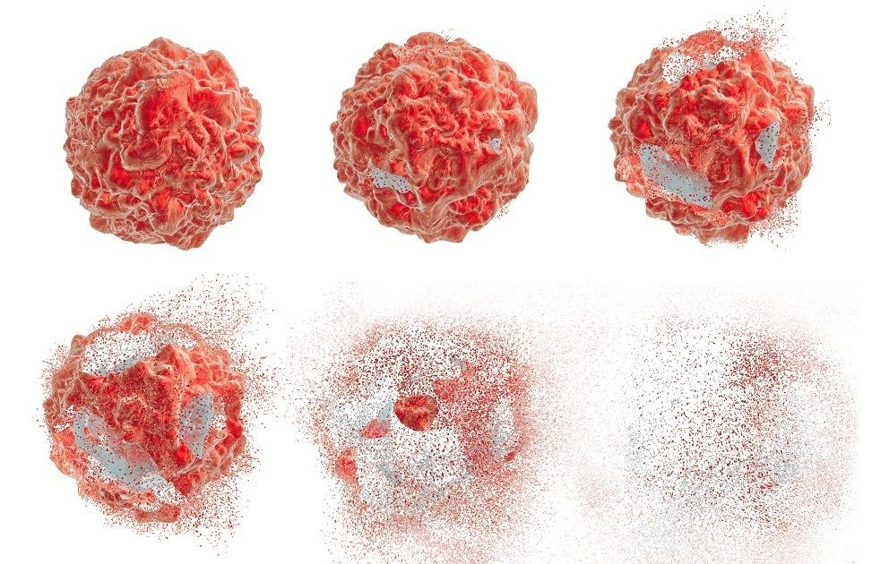 When Cell Death Goes Bad — Researchers Discover Role in Cancer and ...