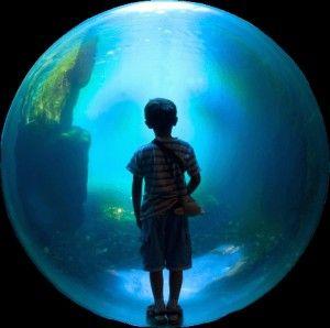 boy_bubble2
