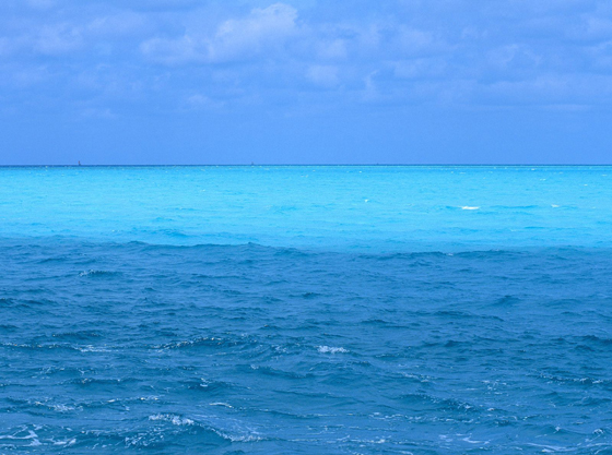 http://lifeboat.com/images/blue.ocean